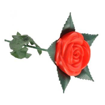 Šviečiančios rožės dekoracija1