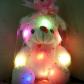 Pliušinis LED šviečiantis meškiukas (2)